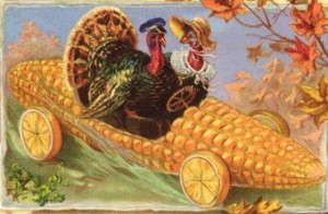 turkeys driving a car